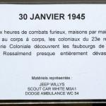 DSC_8654